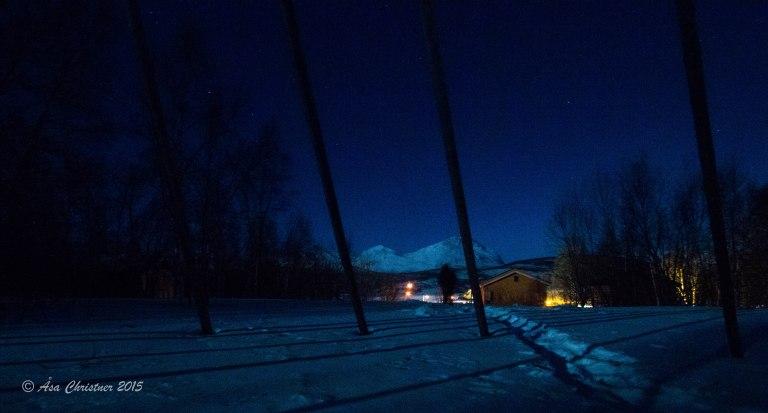 Visit Narvik_-14