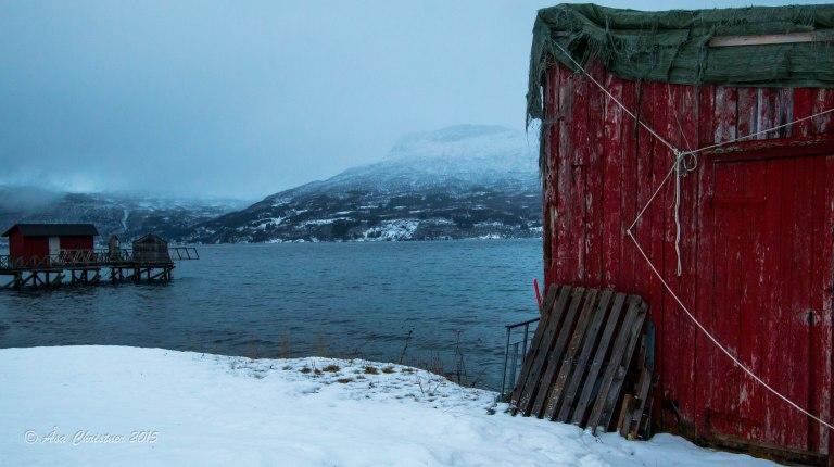 Visit Narvik_-38