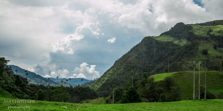 Valle de Cocora-22