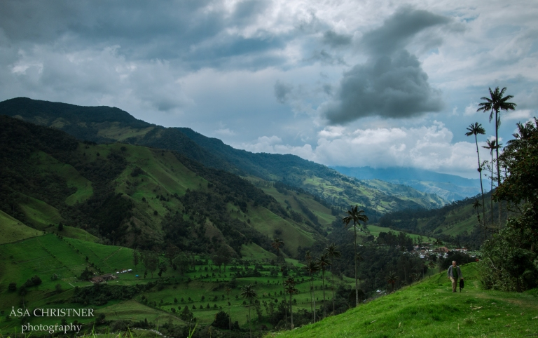 Valle de Cocora-32